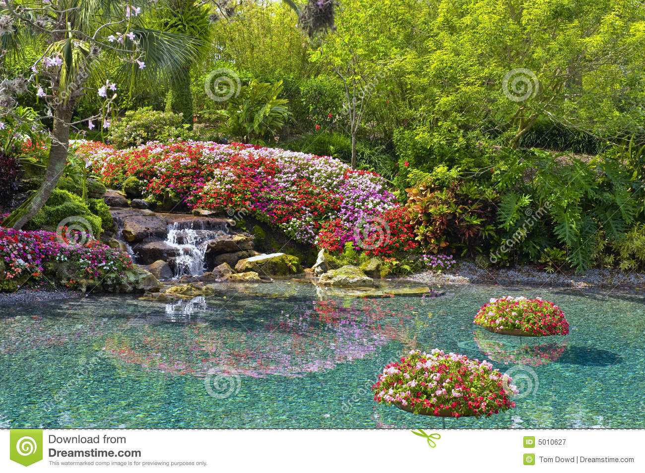 Flowers around pond stock image image of beauty flora for Flower garden ponds