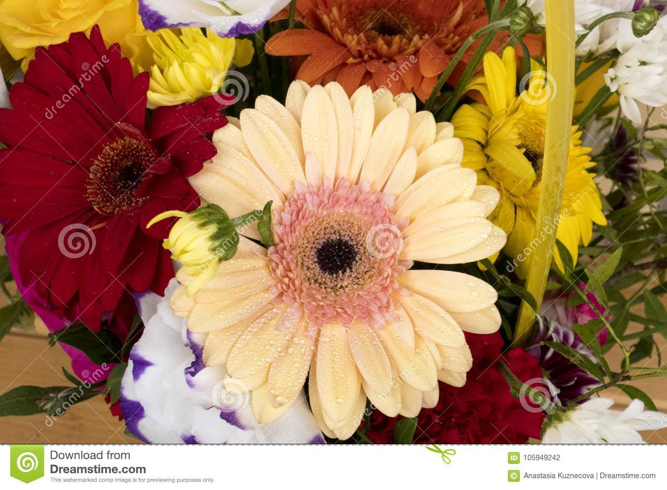 Flowers Stock Photo Image Of Bouquet Flower Bold 105949242