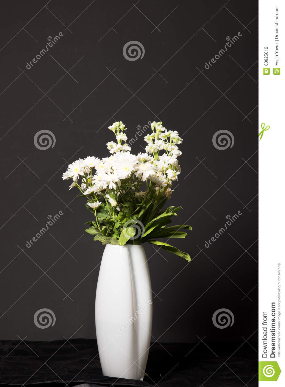 Flowers with Black Background