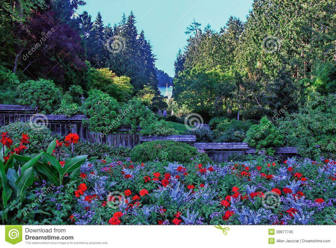 Flowers in bloom stock photo image 39877745 - What time does victoria gardens close ...