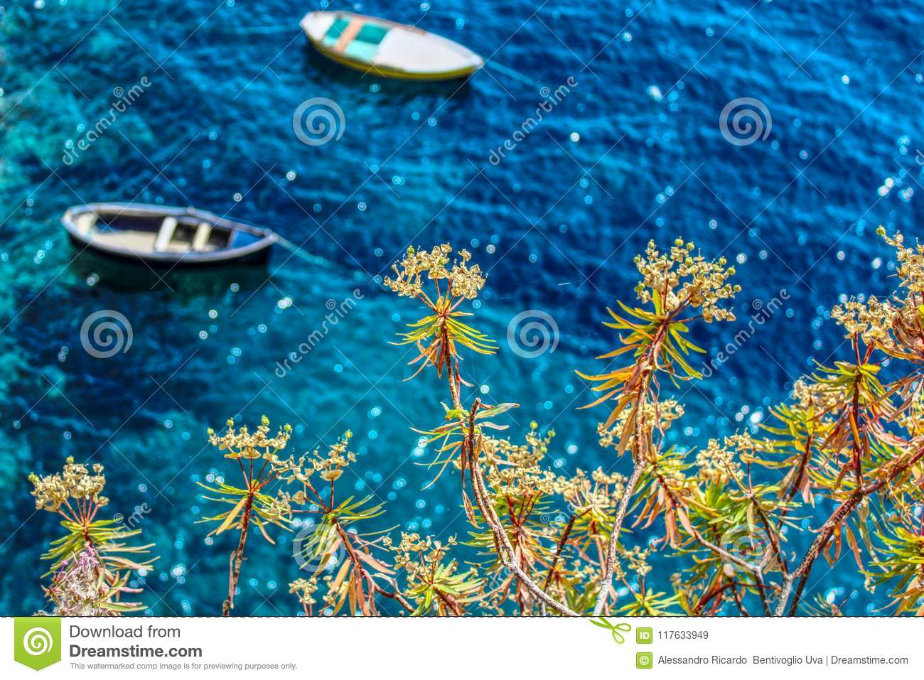 Flowers and blue water italy stock image image of paraiso flowers and blue water italy izmirmasajfo