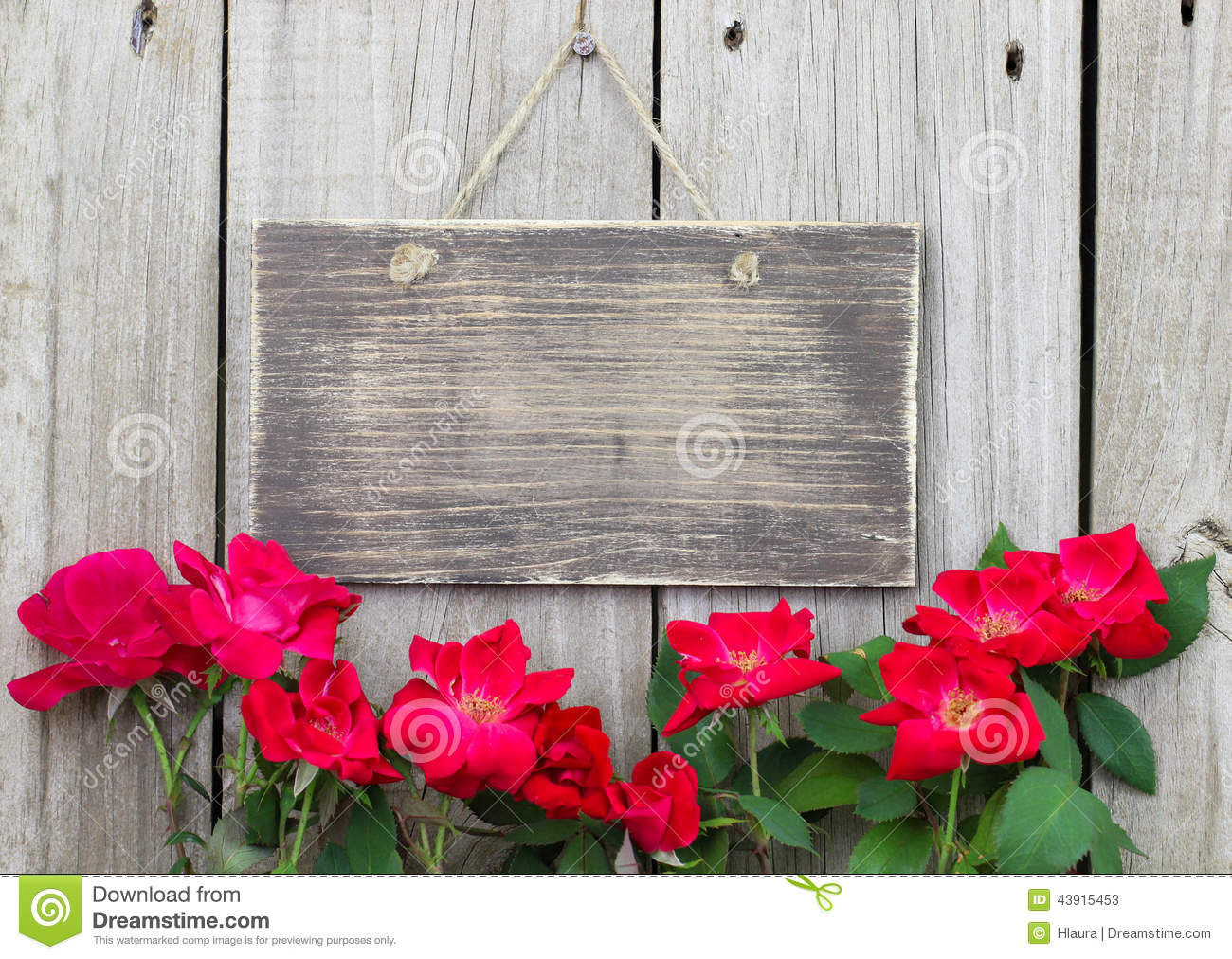 Flowers Bordering Blank Rustic Wooden Sign Hanging On