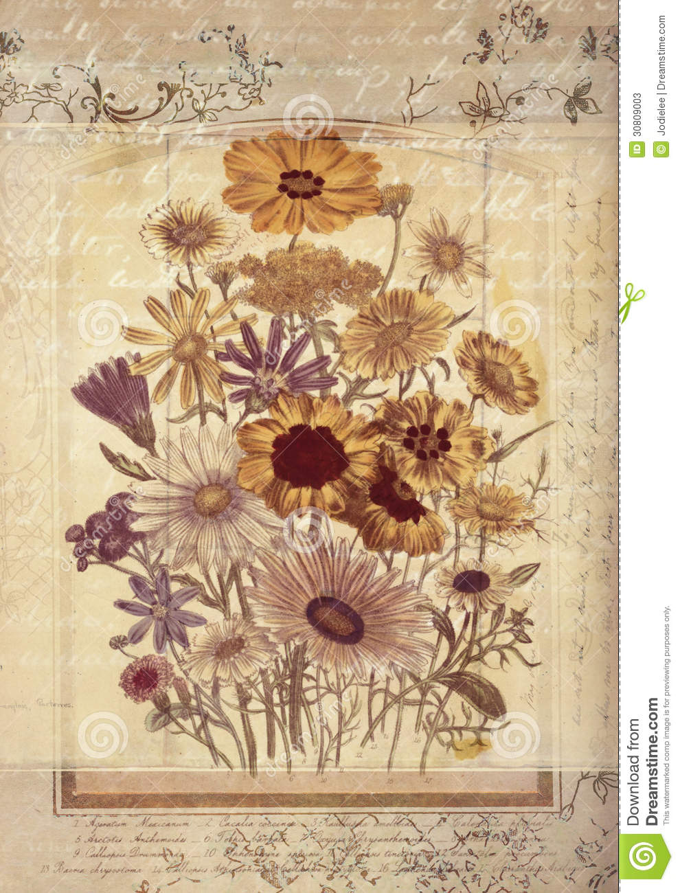 Flowers botanical vintage style wall art with textured background stock photo - Vintage style images ...