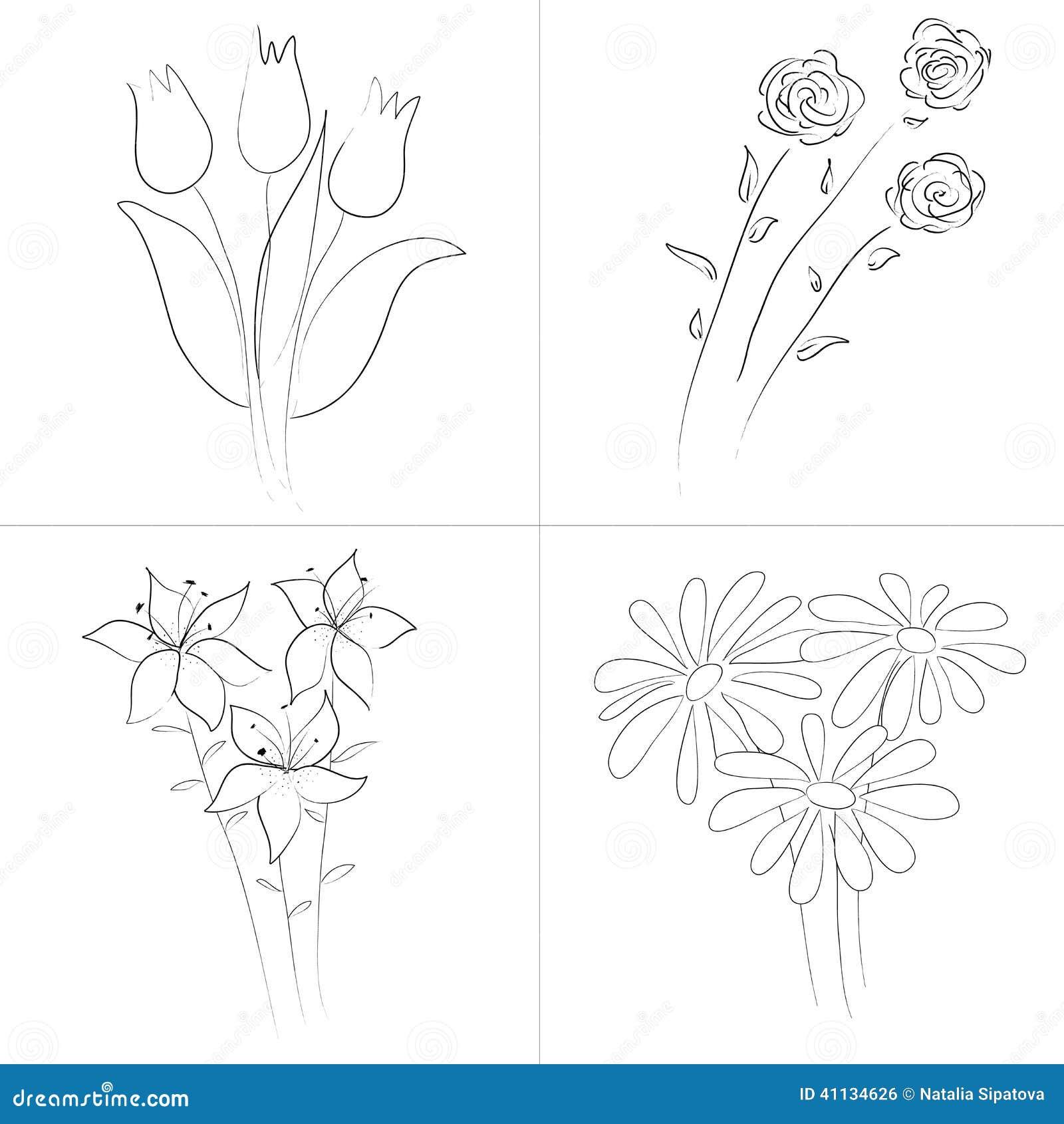 Flowers Bouquets Sketch Illustration 41134626 Megapixl