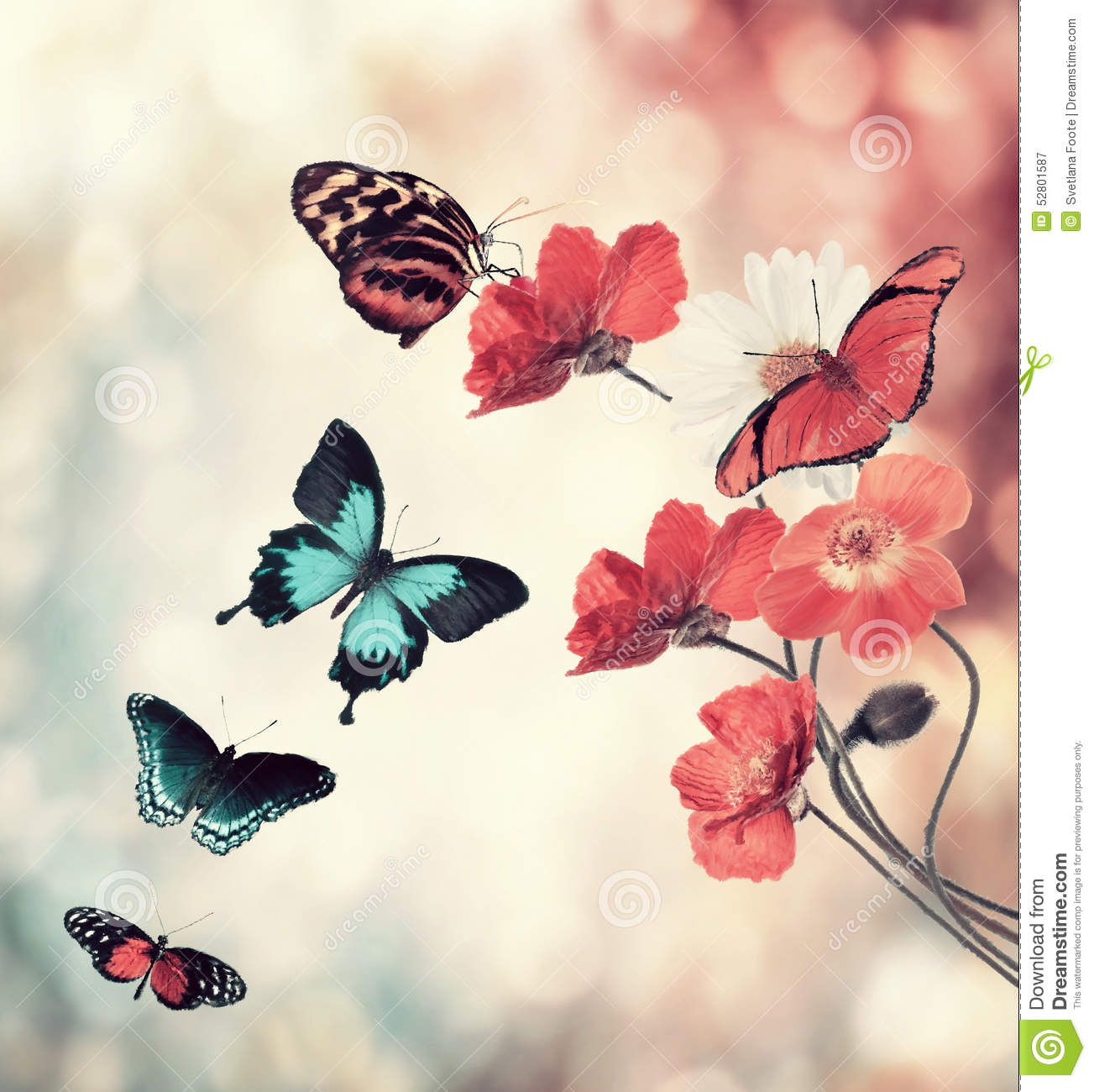 Flowers And Butterflies stock illustration. Image of ...