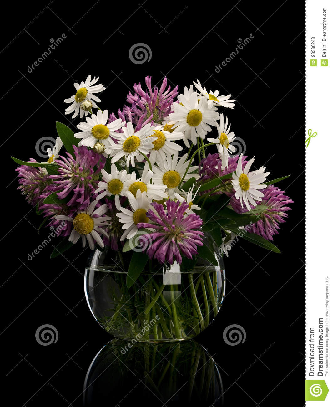 Flowers of clover and chamomile in glass vase stock photo image of download flowers of clover and chamomile in glass vase stock photo image of bouquet izmirmasajfo