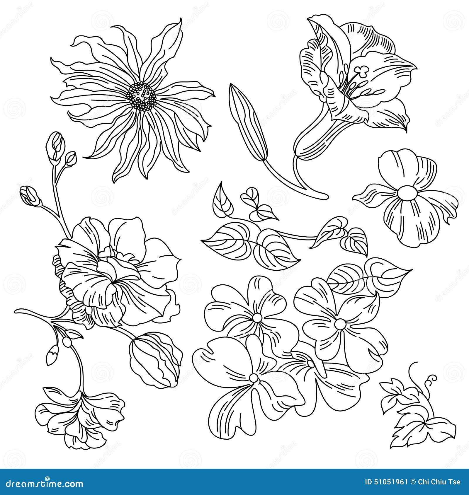 Flowers Collection Stock Illustration Illustration Of Black 51051961