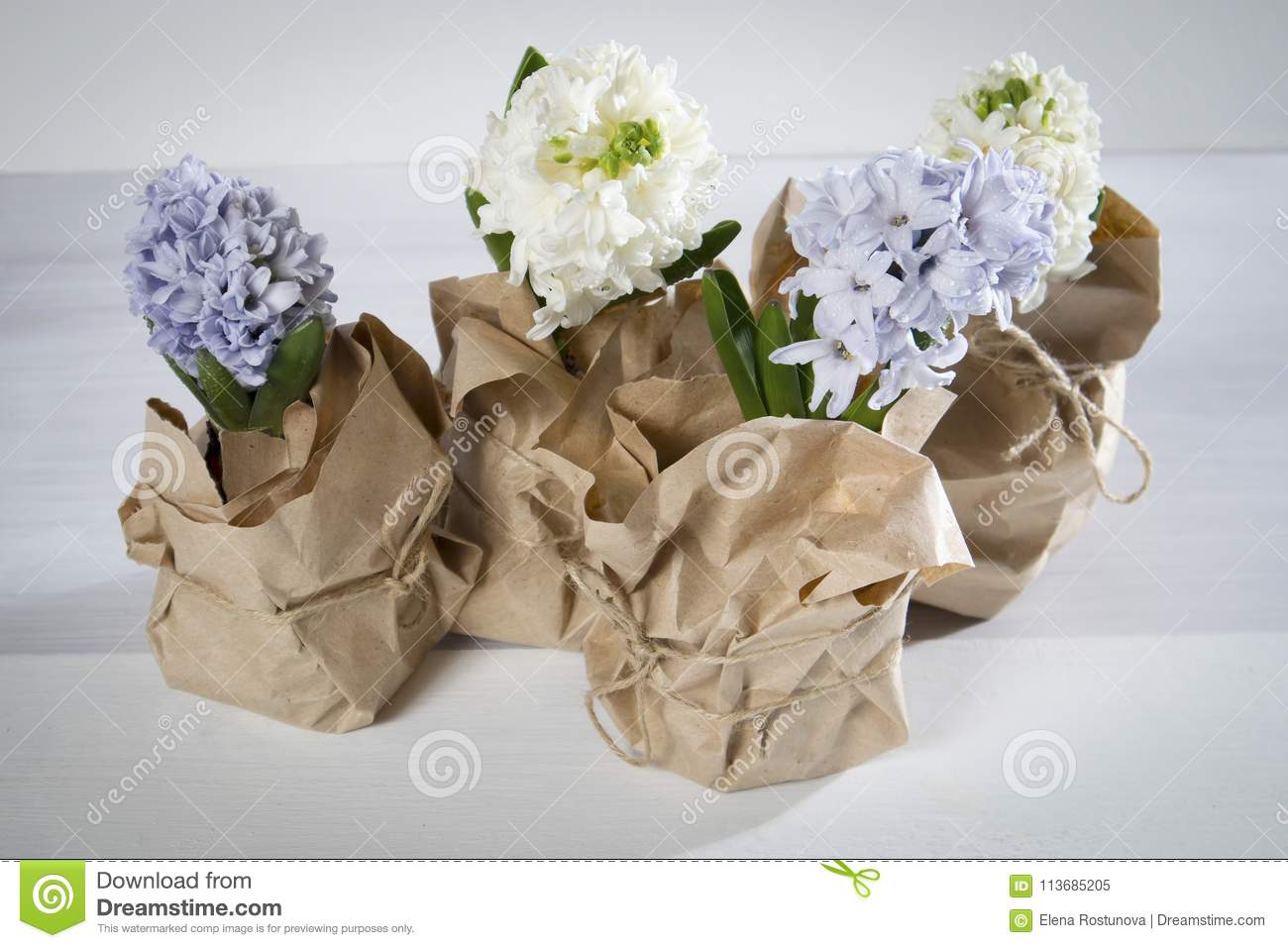 The Flowers Composition With Lilac And White Hyacinths Wrapped In