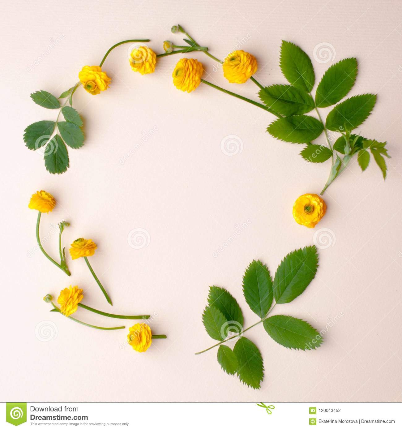 Flowers composition wreath made of various yellow flowers and green flowers composition wreath made of various yellow flowers and green leaves and branches on pastel mightylinksfo