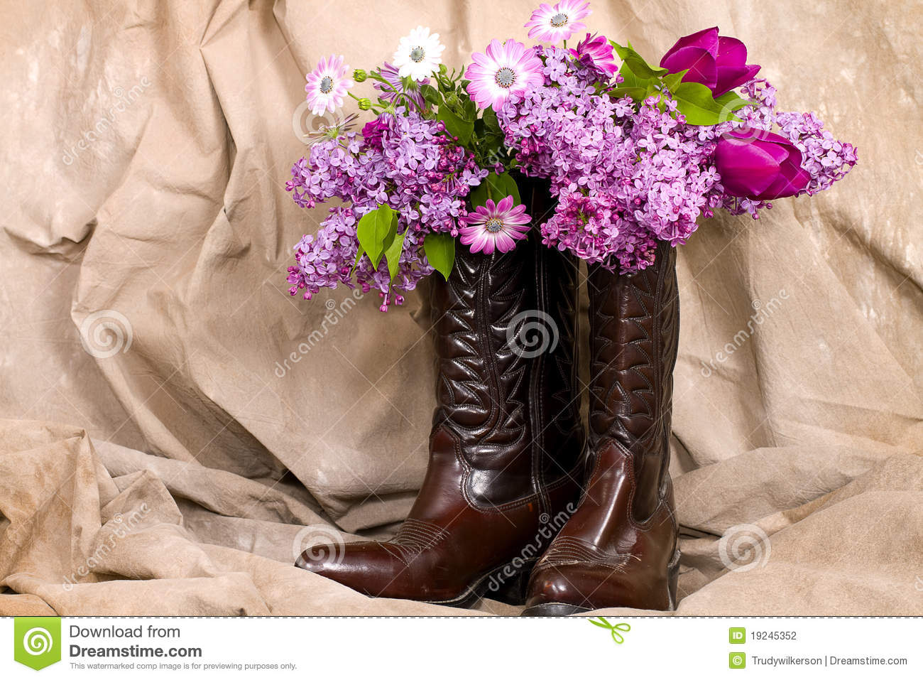 Cowboy Boots Flowers Stock Photos, Images, & Pictures - 41 Images