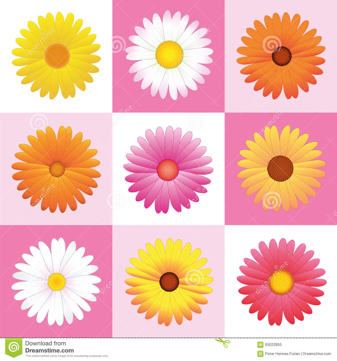 flowers daisies pink pattern background stock vector