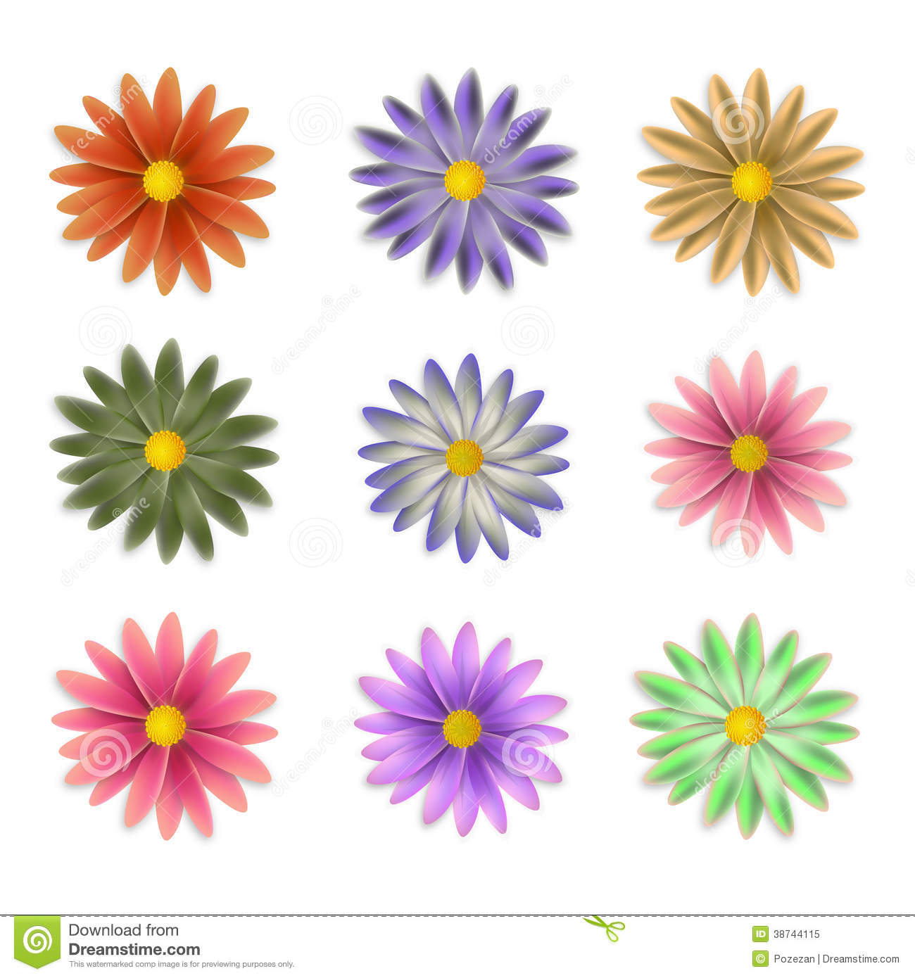 Flowers of different colors royalty free stock photo for What makes flowers different colors