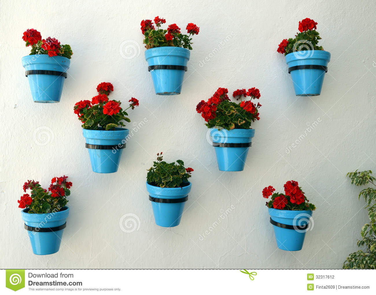 Flowers In Flowerpot On Wall Stock Photography Image