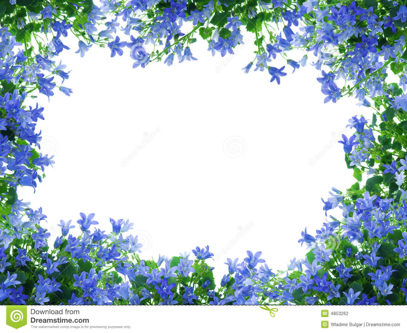 Flowers Frame Stock Photography Image 4853262