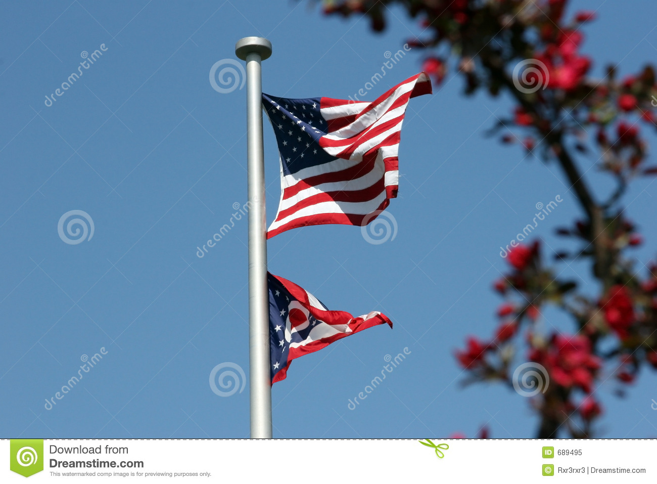 Flowers and freedom ii royalty free stock photo image 689495 - Flowers that mean freedom ...