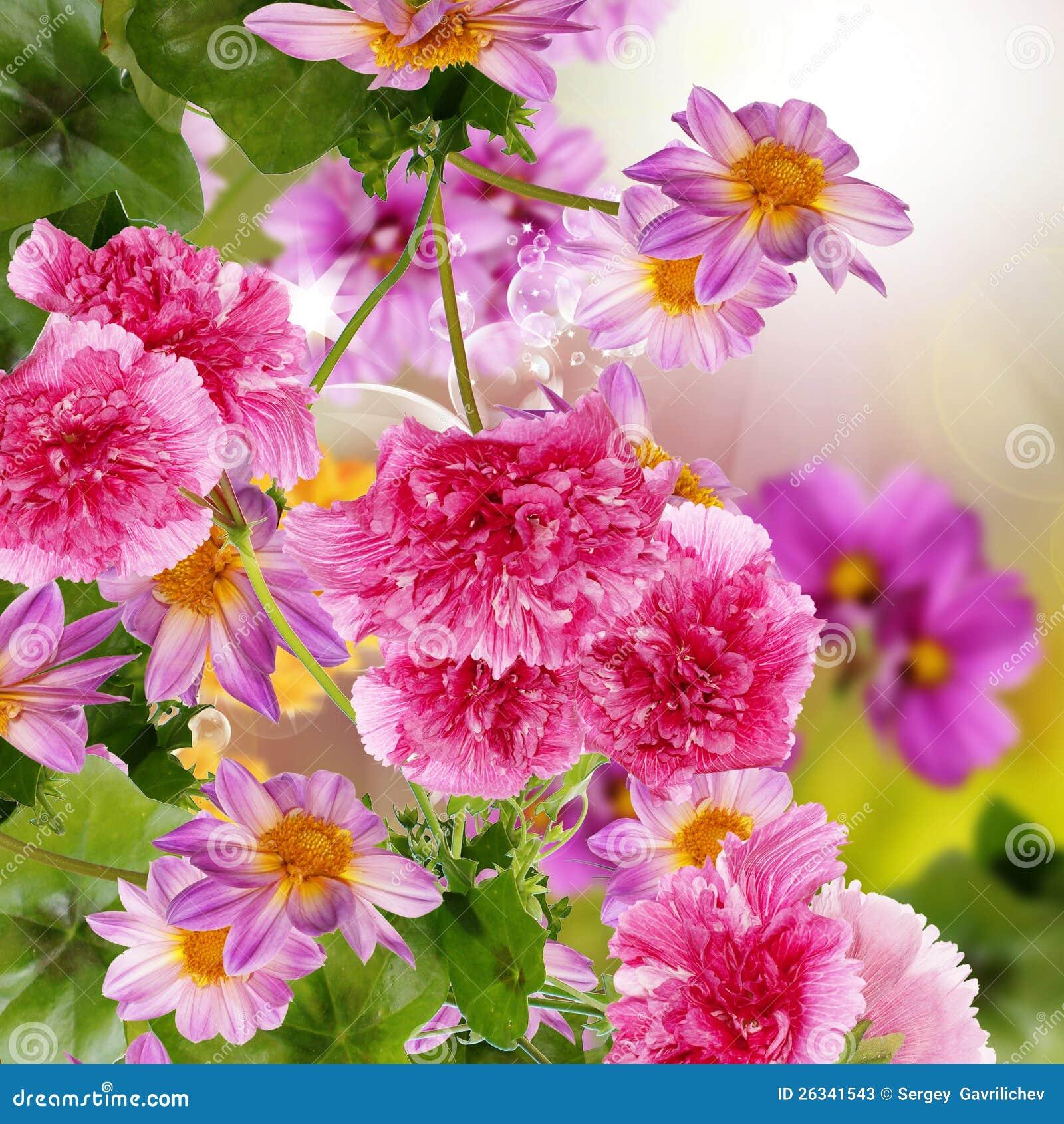 flowers garden. Flowers Garden
