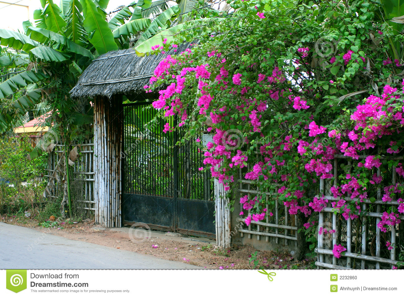 Flowers Gate Stock Photo Image Of Entrance Road Summer