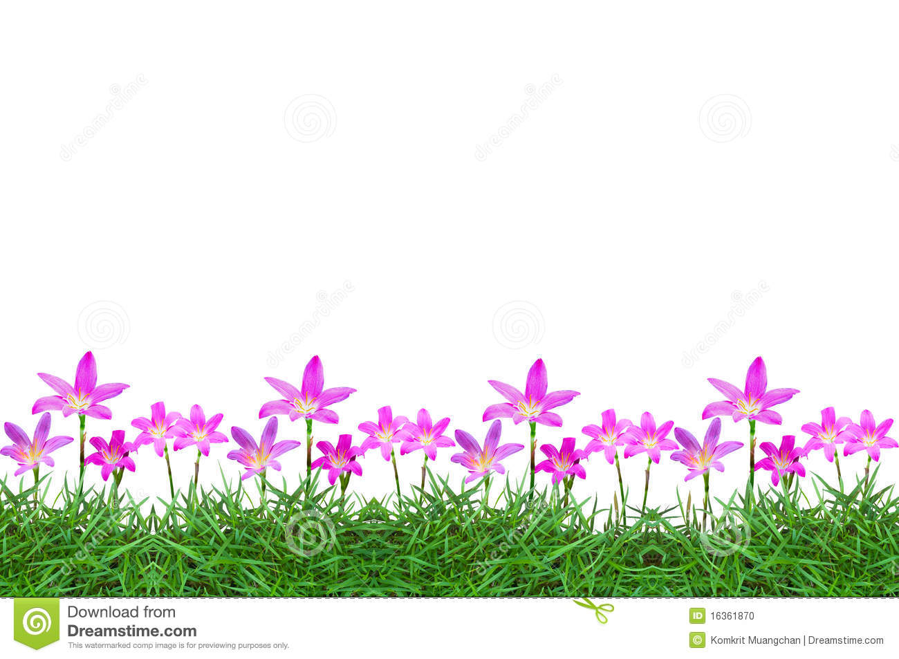 grass and flowers border. Simple Flowers Flowers On Green Grass Background Inside Grass And Border