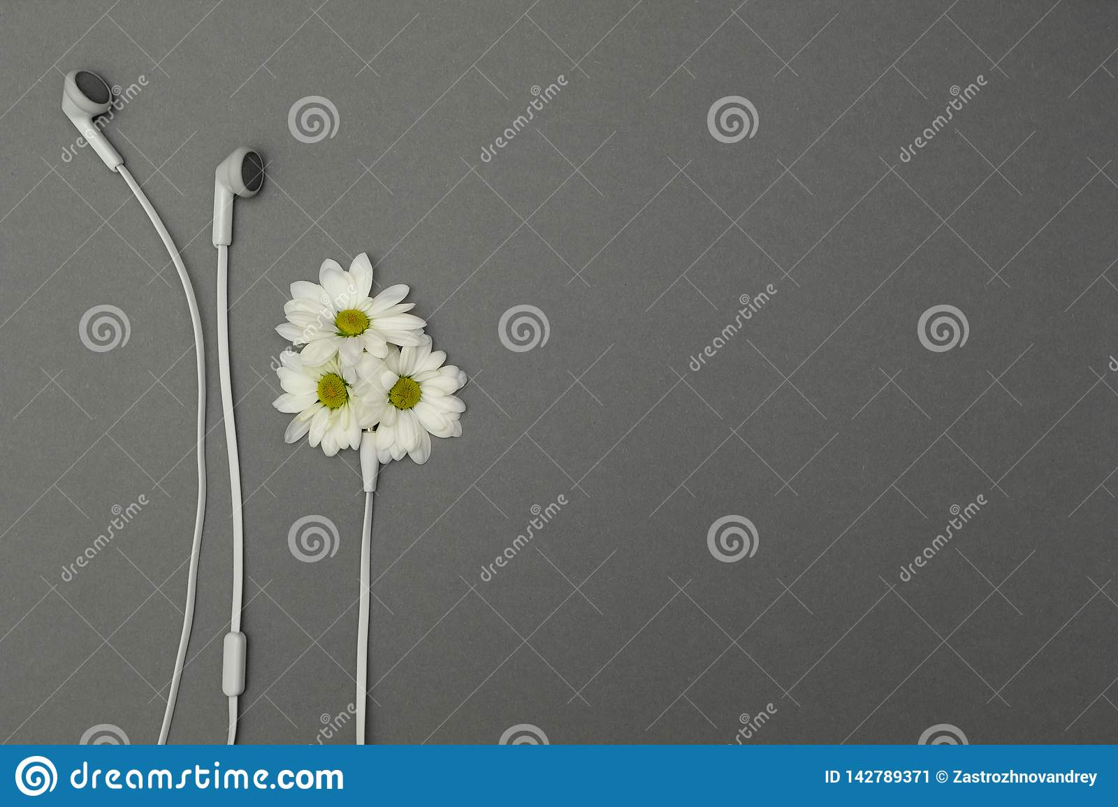 Flowers and headphones, place for text