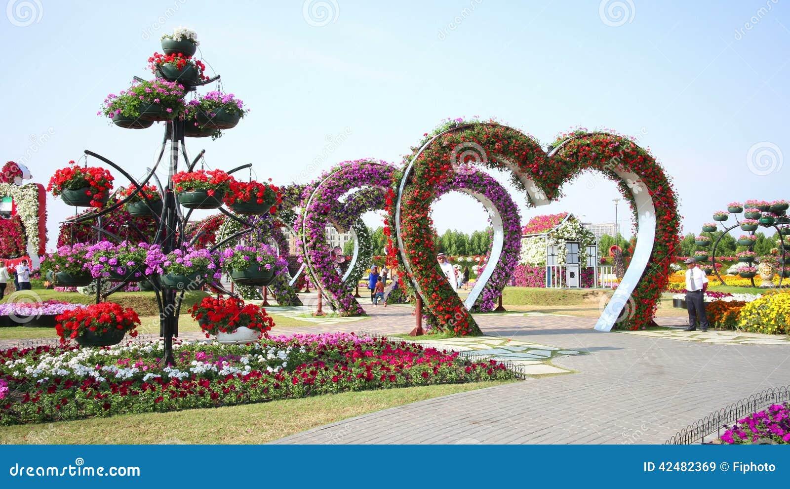 Flowers heart magic garden time lapse near dubai stock video video