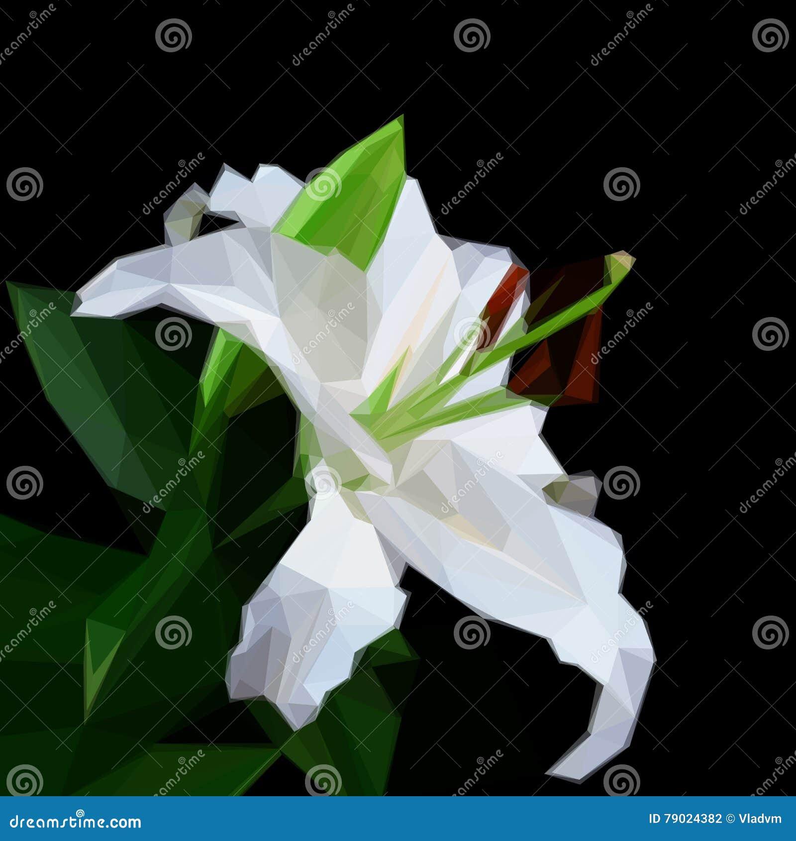 Flowers lily on black background flower symbol geometric download comp izmirmasajfo