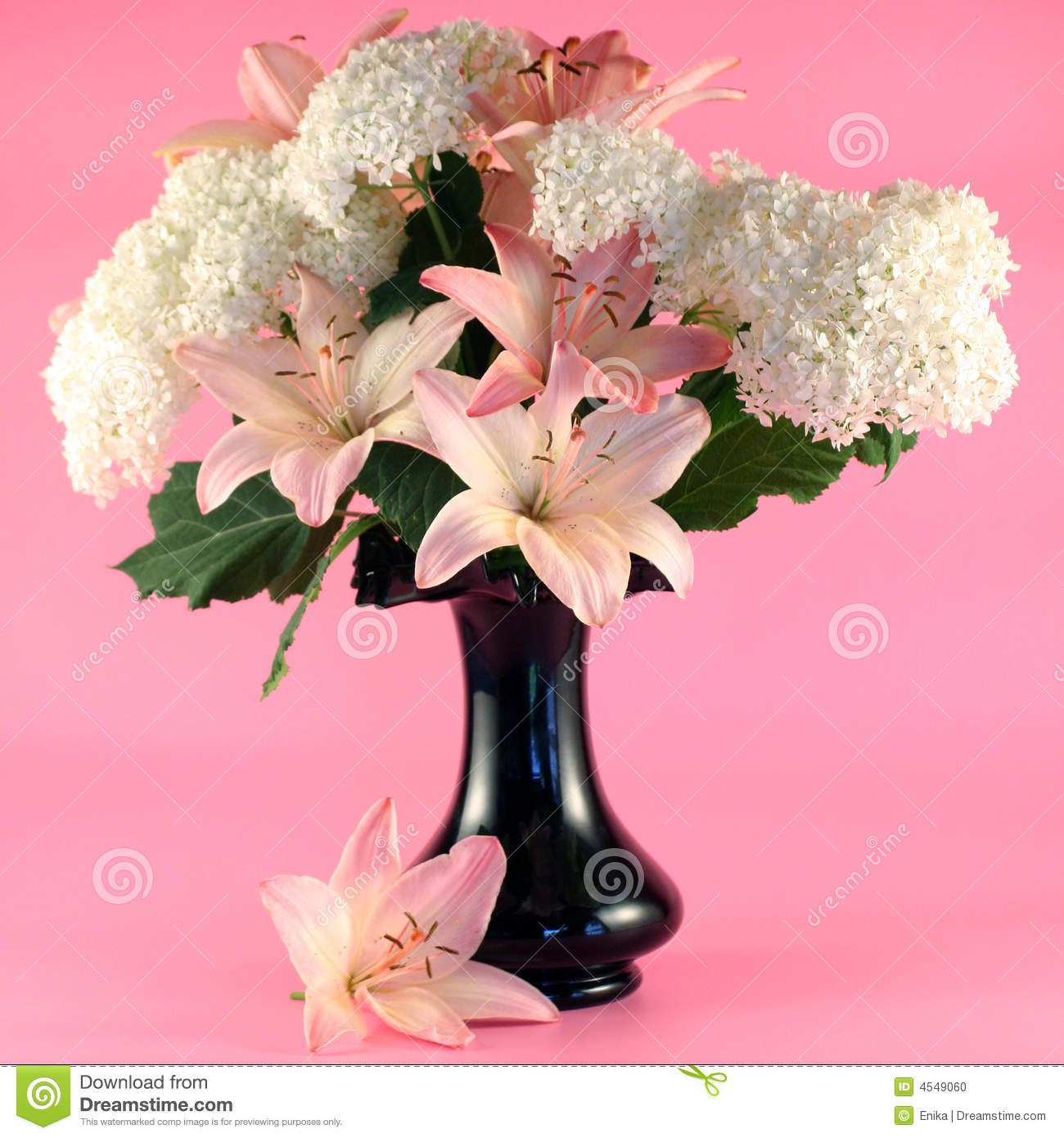 Flowers of lily and hydrangea stock photo image of floral petal flowers of lily and hydrangea izmirmasajfo