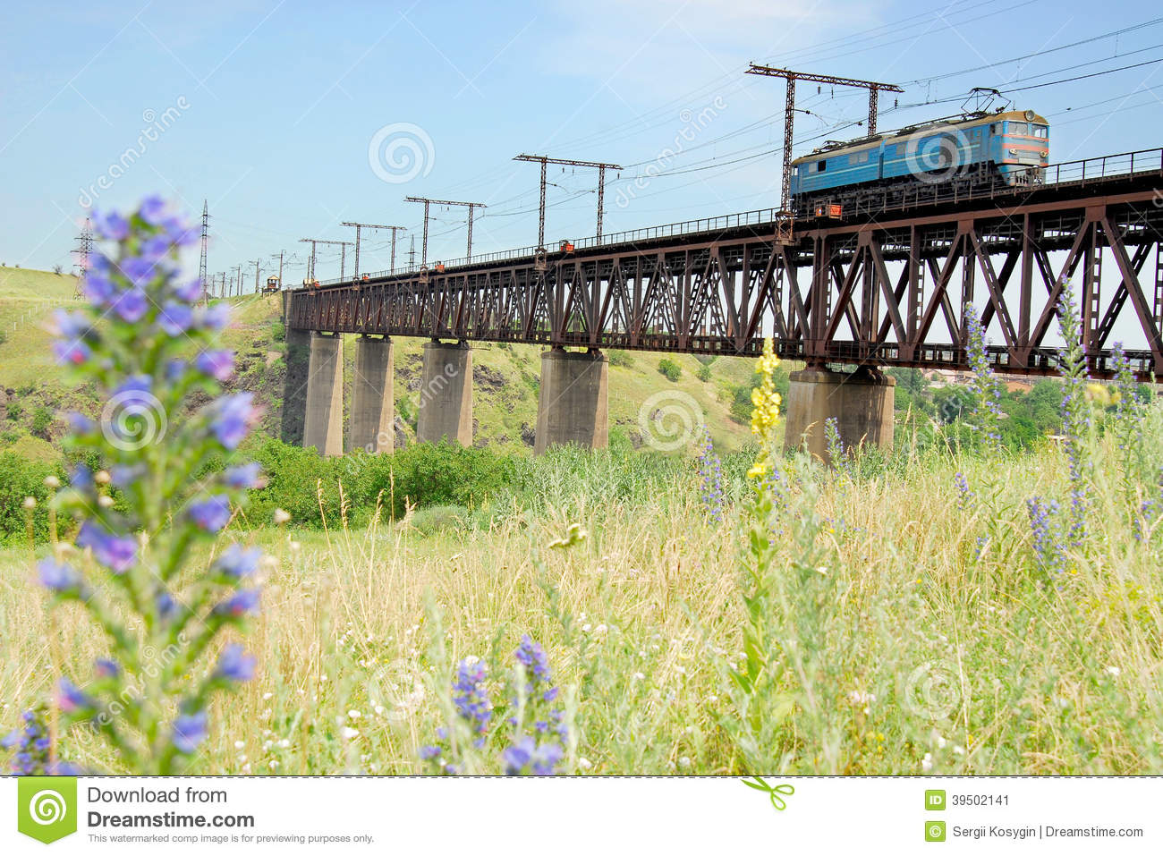 Flowers and locomotive