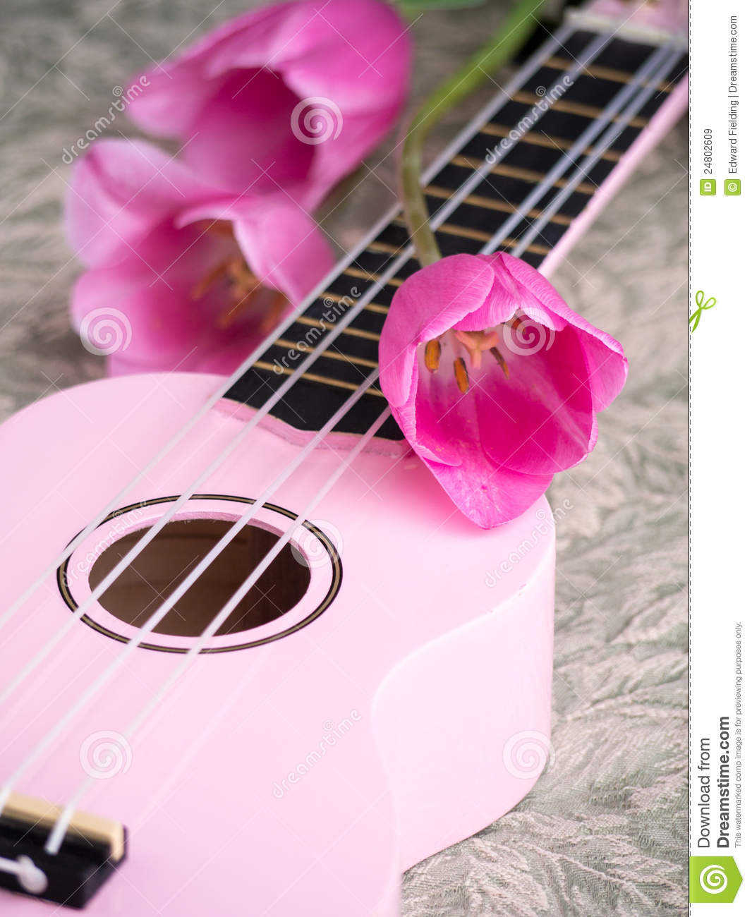 flowers and music stock image image of blossom musical