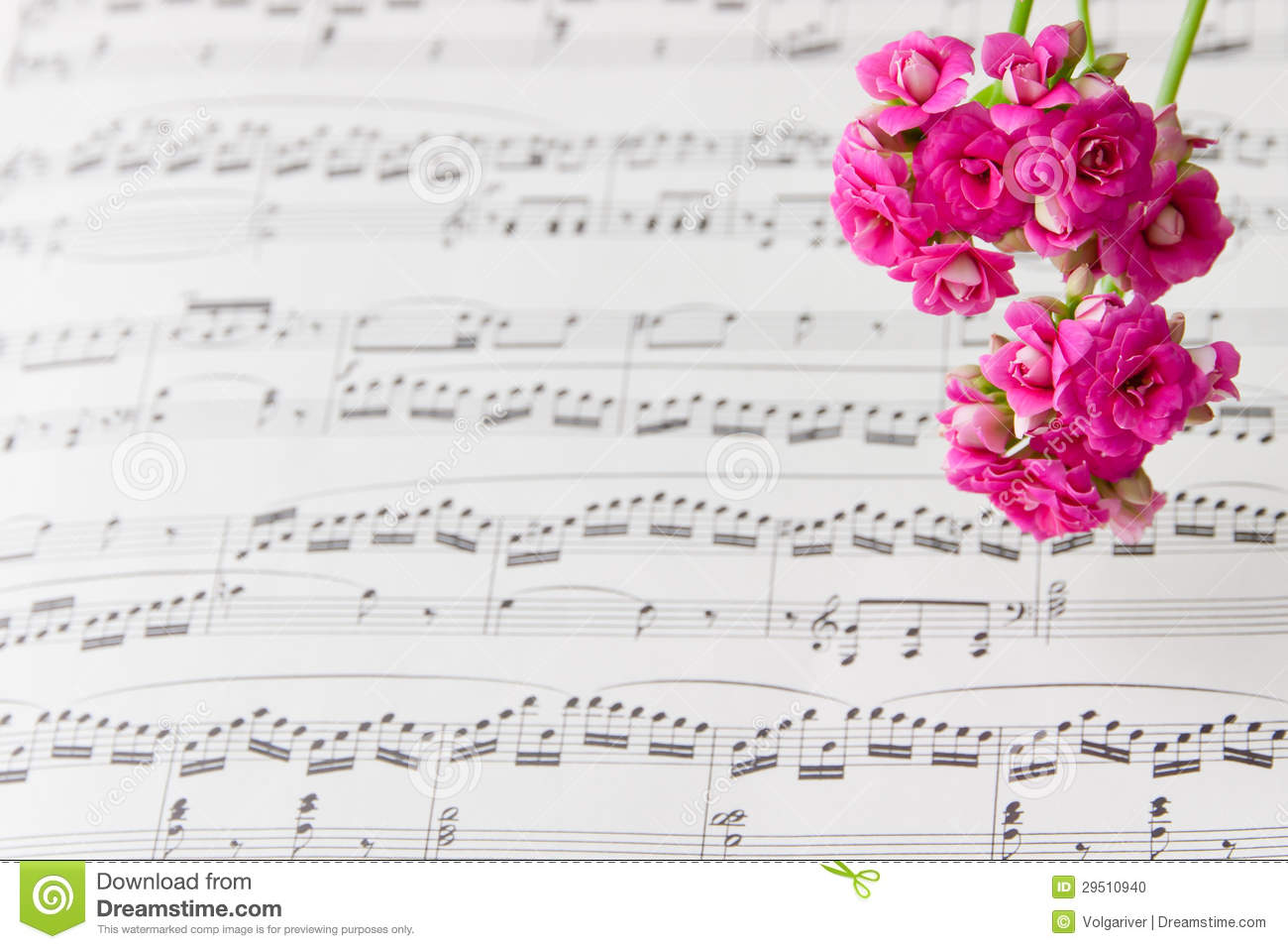 Flowers On Music Notes Sheet Abstract Art Background Stock Photo