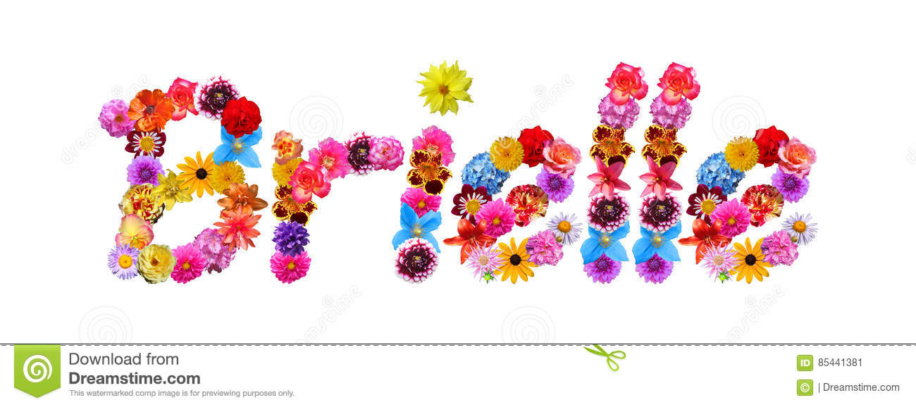 flowers name brielle stock illustration  image, Beautiful flower