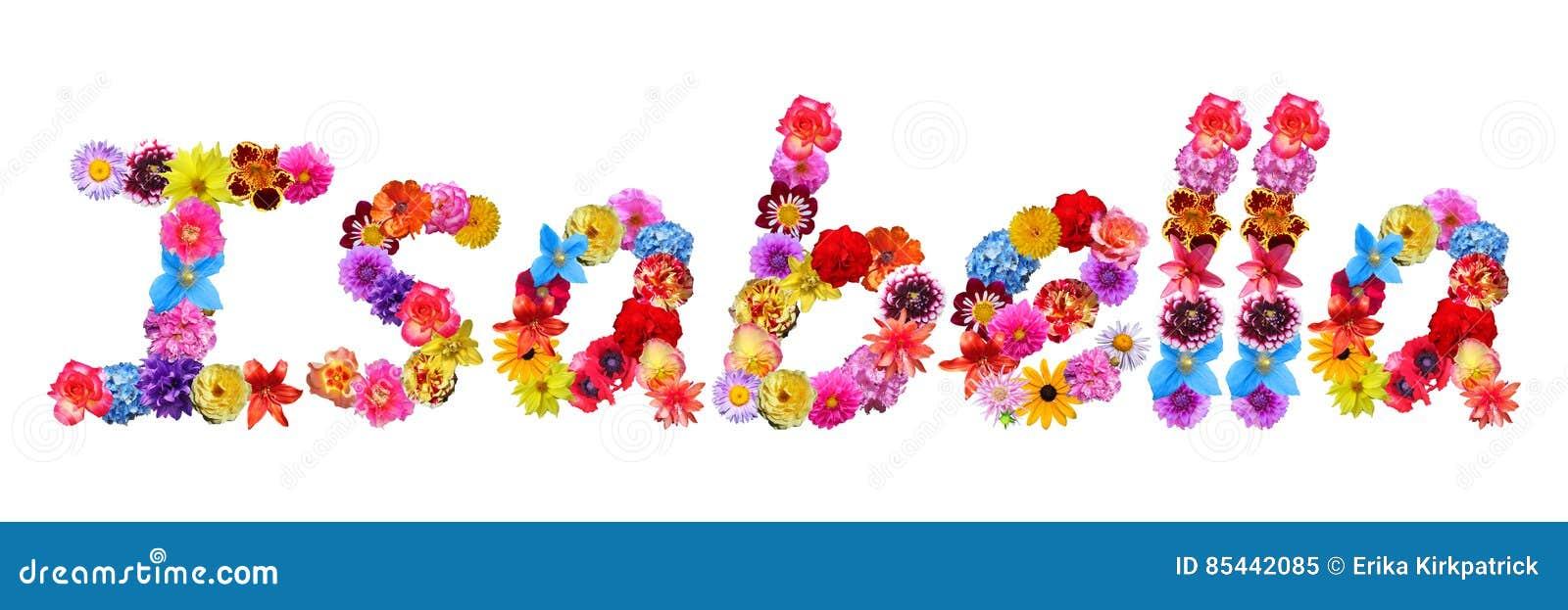 Flowers Name Isabella Stock Illustration Illustration Of Font