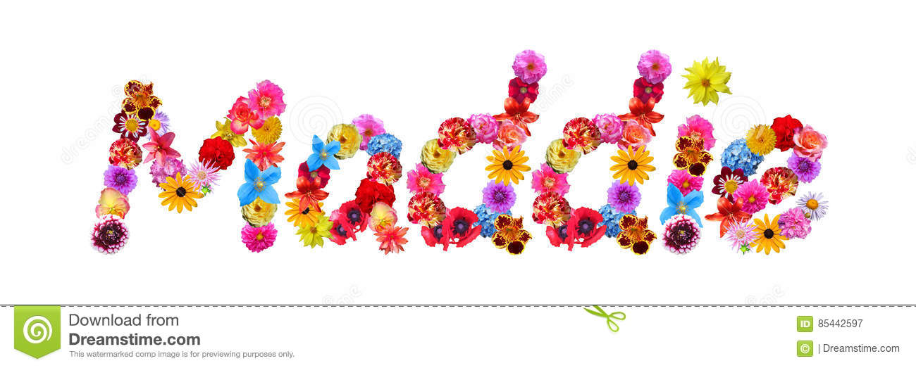Flowers Name Maddie Stock Illustration Illustration Of