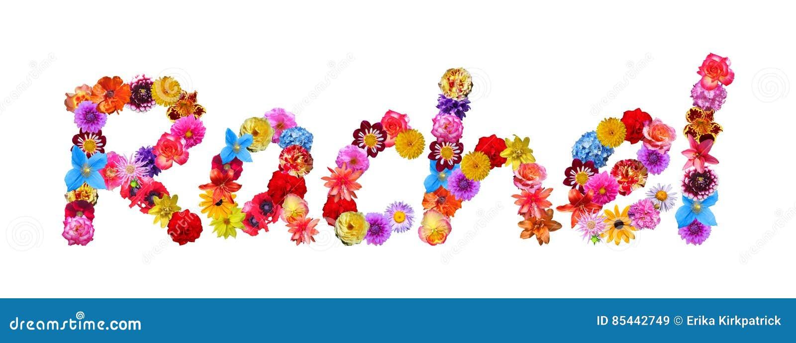 flowers name rachel stock illustration illustration of banner