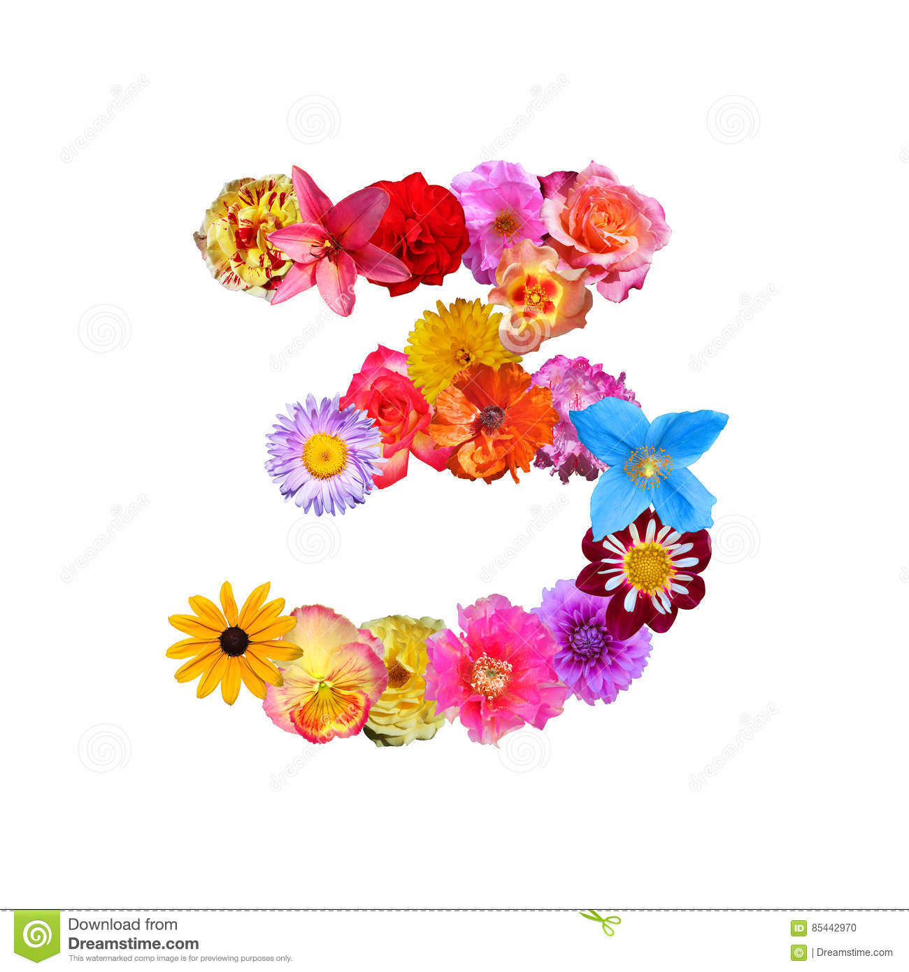 Flowers Number Three Stock Illustration  Illustration Of Leaf