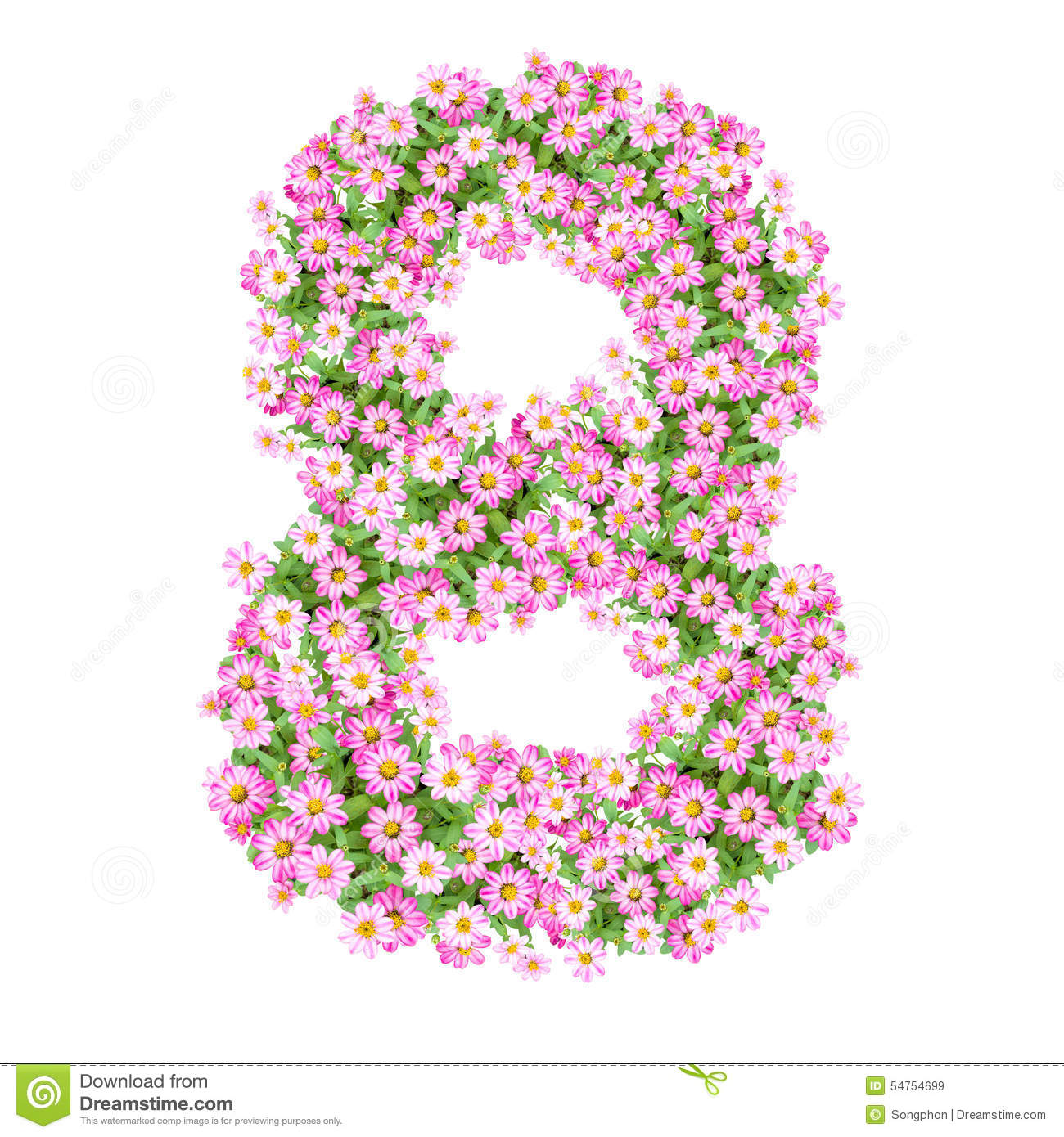 Flowers Numbers 8 Stock Illustration  Illustration Of Isolated