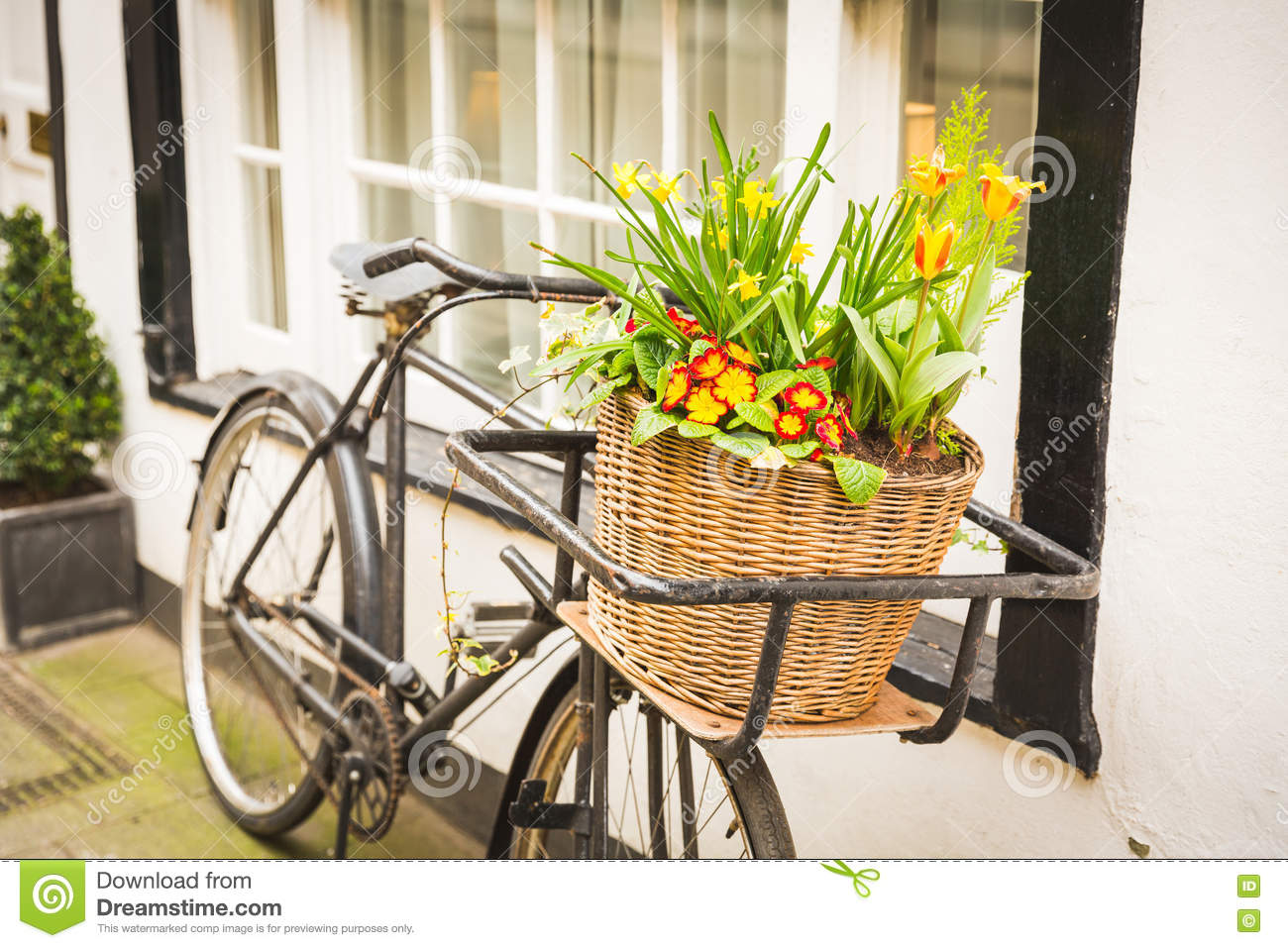 Flowers on an old bike basket next to a window