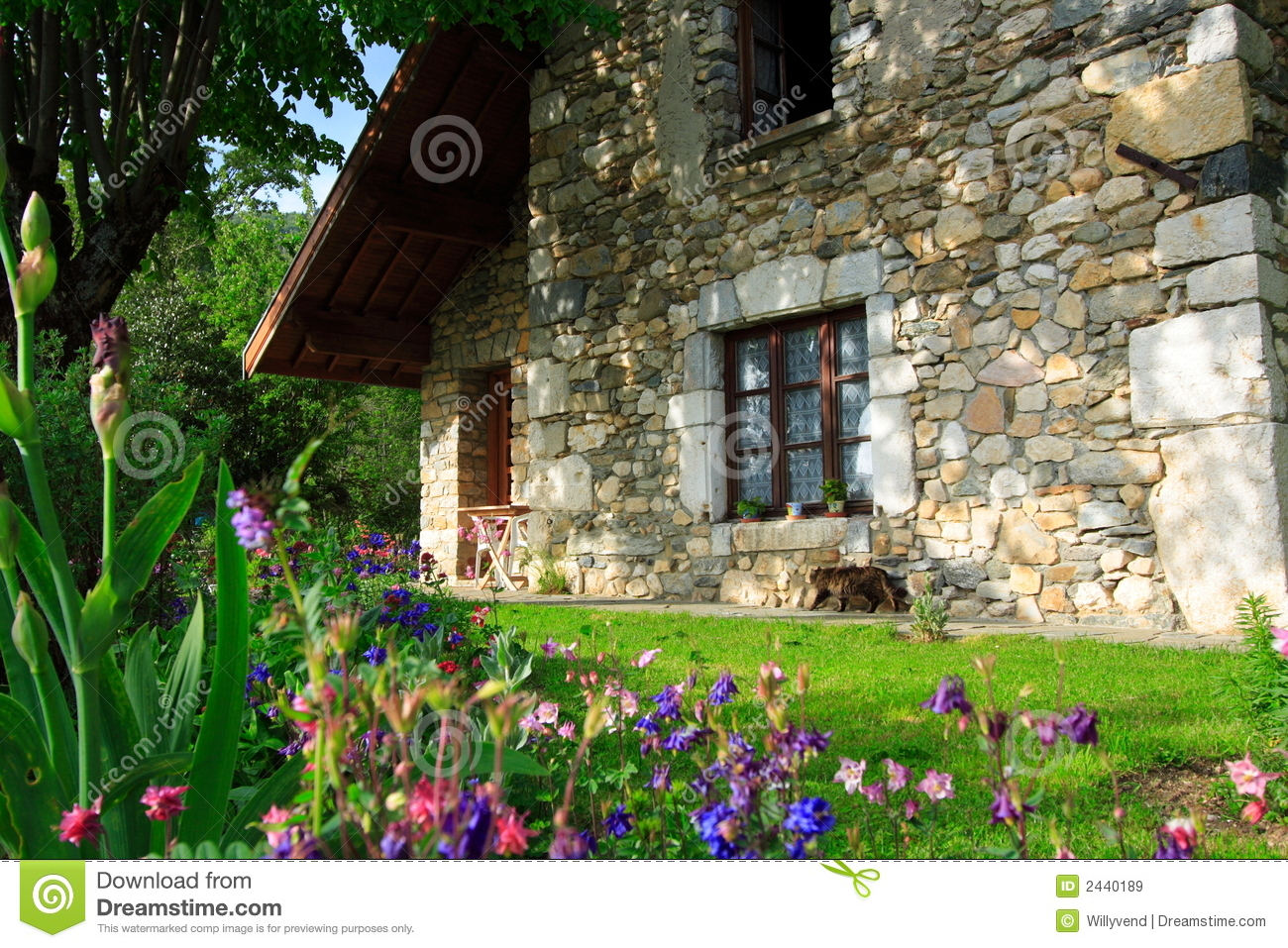 Flowers and old house