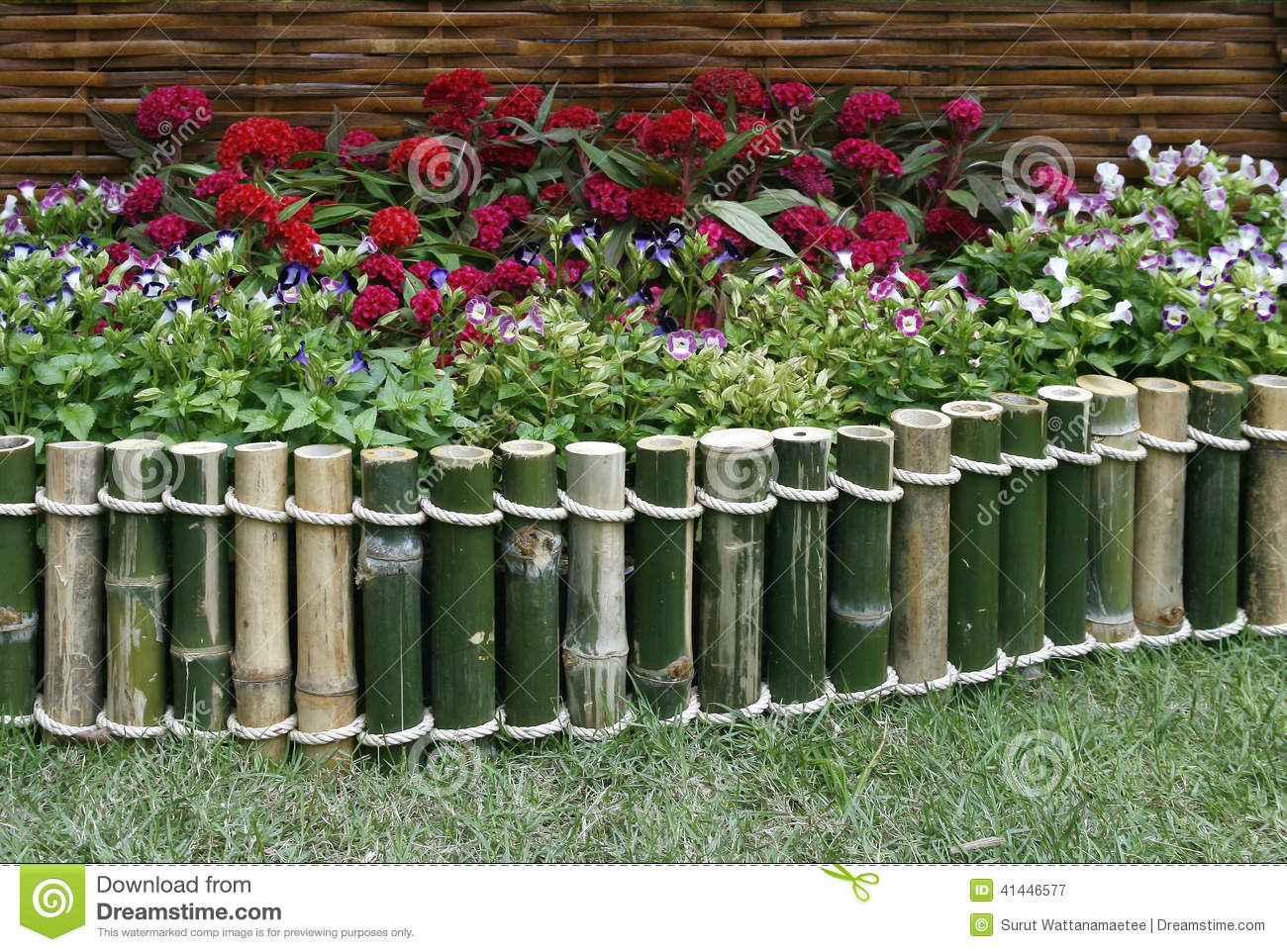 Flowers over bamboo fence stock image image of bamboo - Cercas para jardin ...