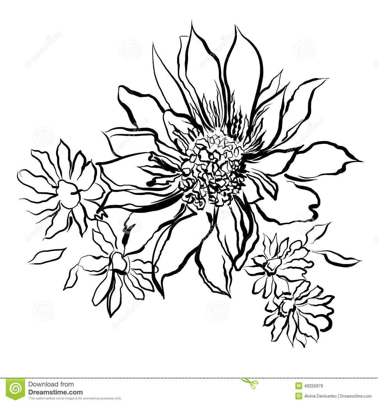 Flowers painted black outline on the white background Coloring book watercolor