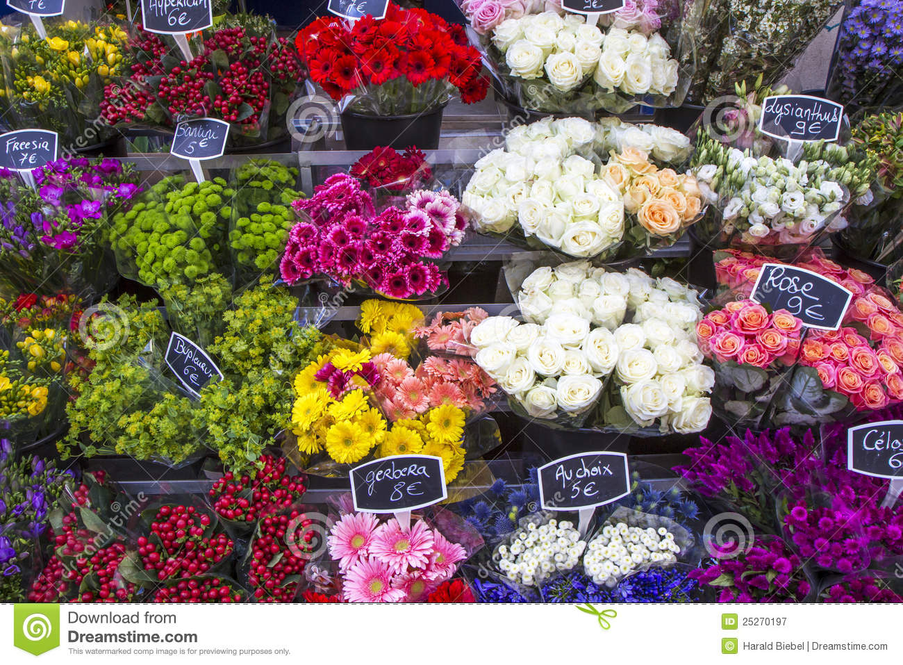 flowers on a paris market france royalty free stock. Black Bedroom Furniture Sets. Home Design Ideas