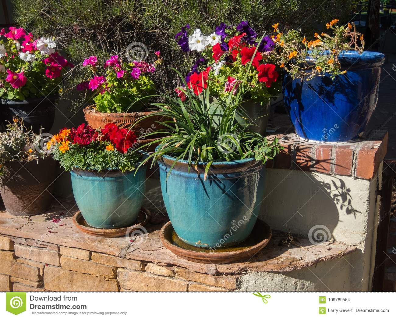 Flowers And Plants In Colorful Containers
