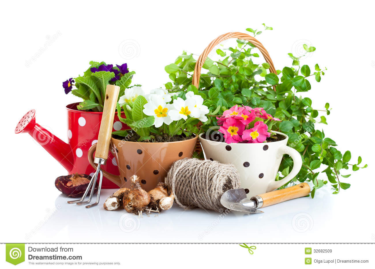 Tools for gardening business plan