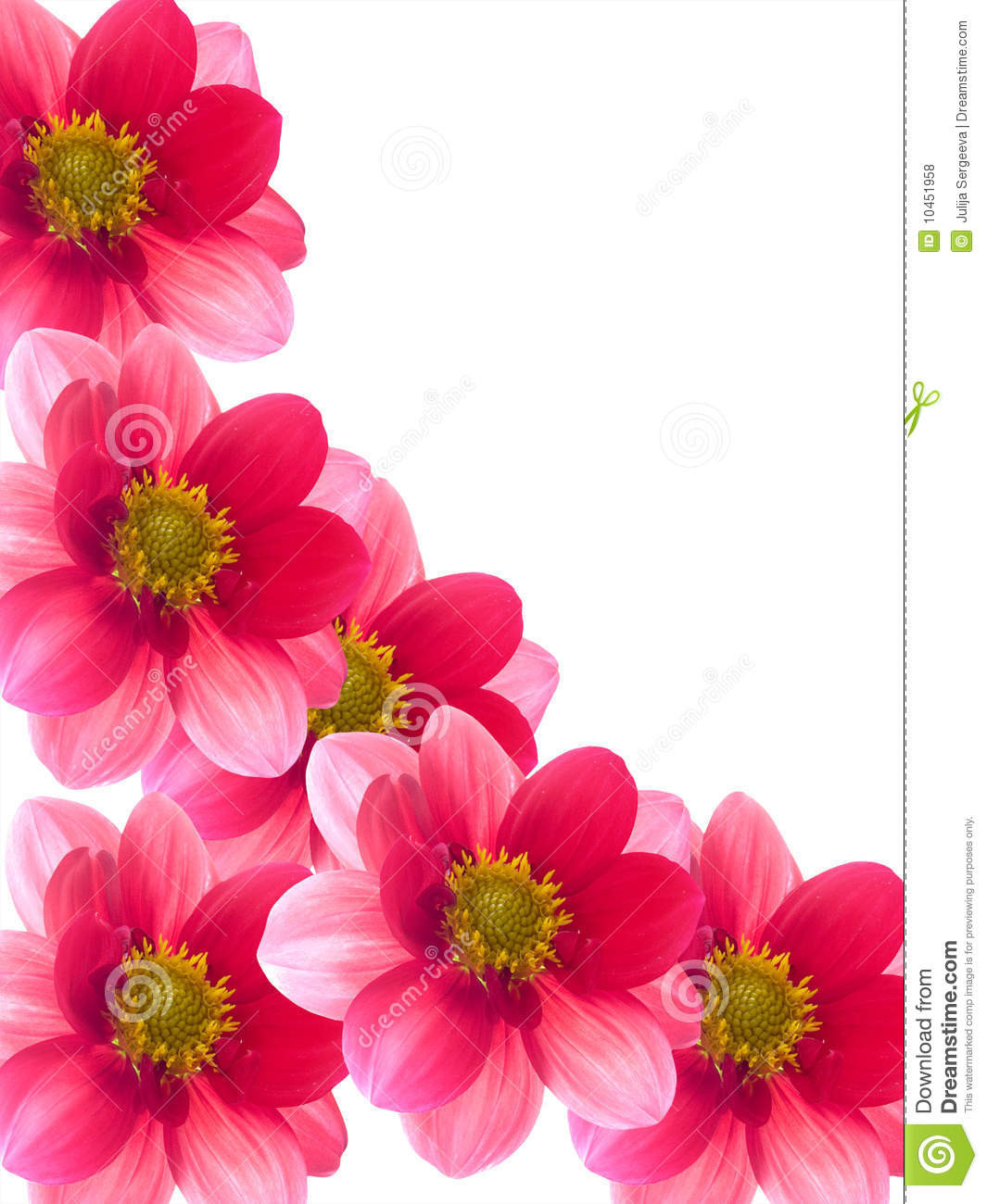 Flowers with red and pink petals stock photo image of summer flowers with red and pink petals mightylinksfo