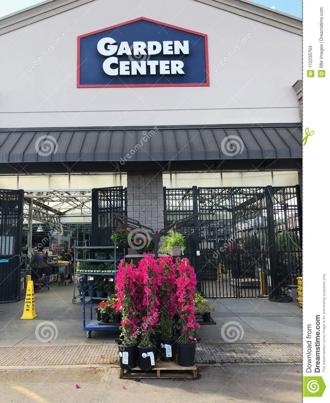 Flowers For Sale At Lowes Garden Center
