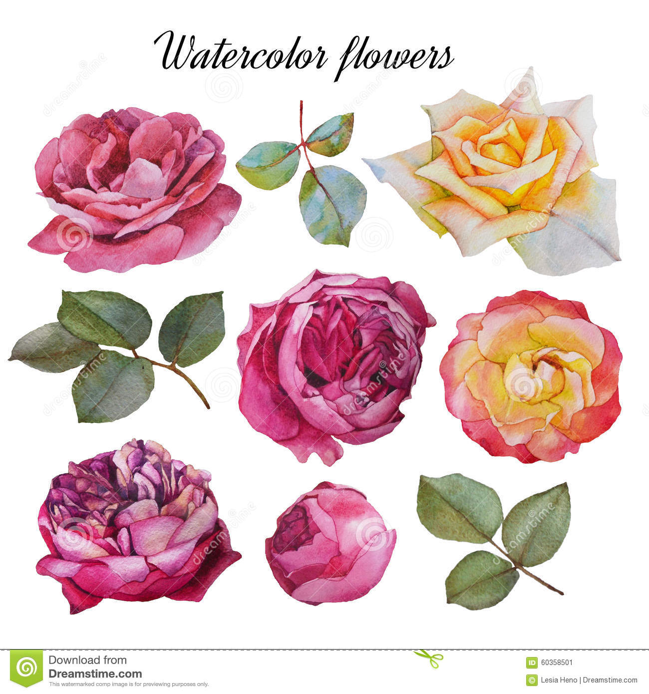 Flowers set of watercolor roses and leaves