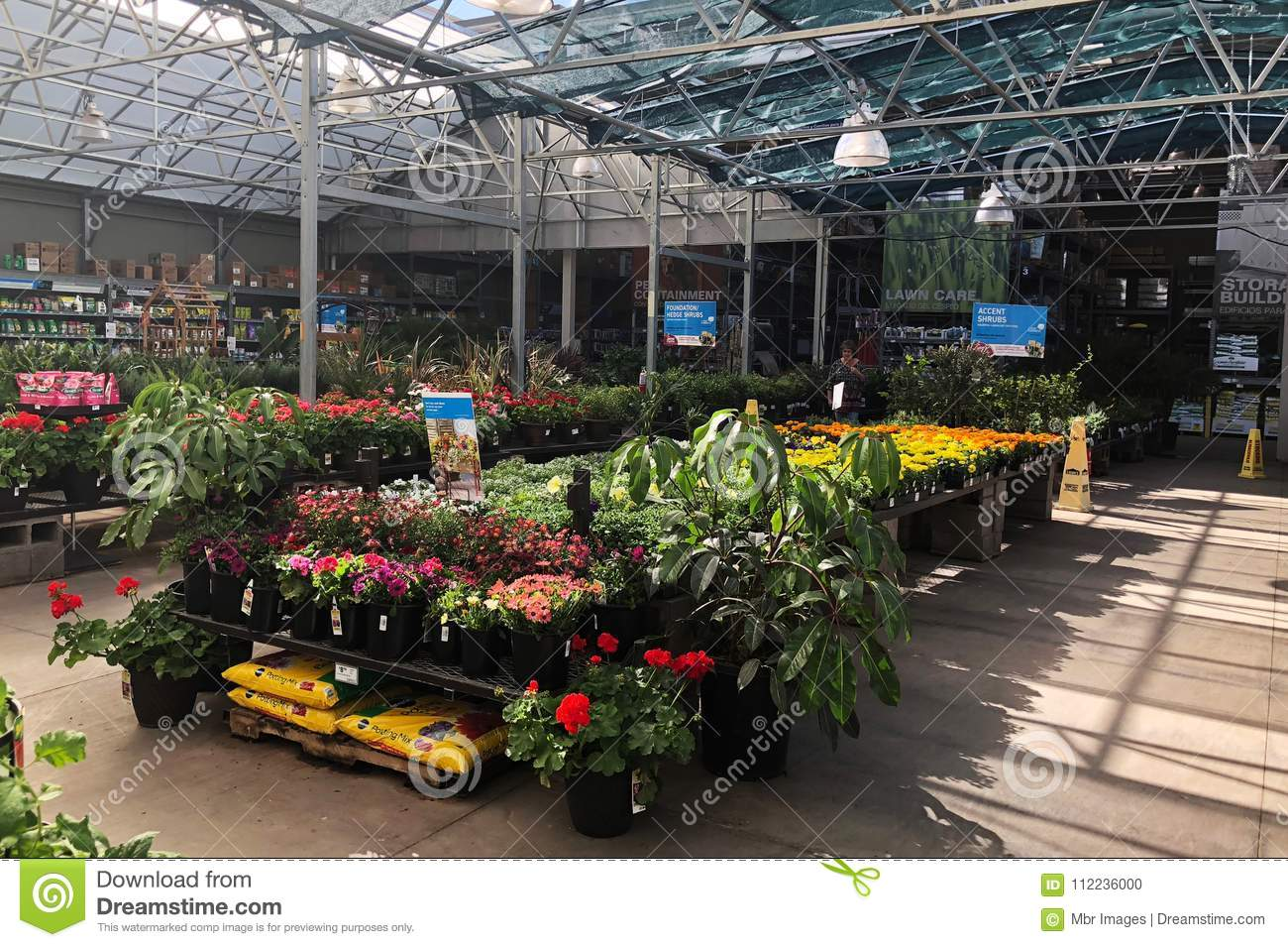Flowers For Sale At Lowes Garden Center Editorial Image