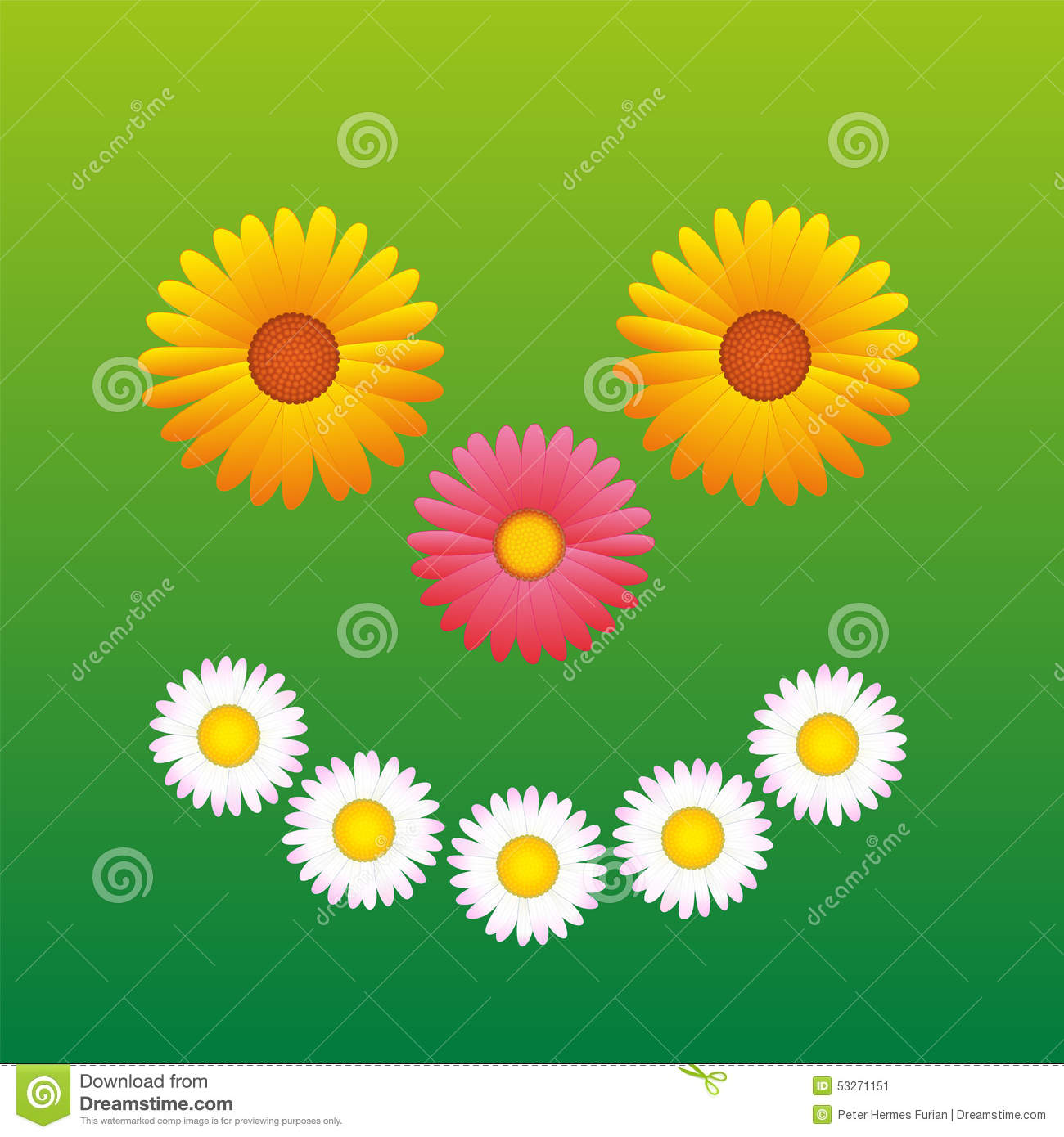 Spring smiley face happy flowers stock illustrations 24 spring flowers smiling happy face fun flowers daisy aster marguerite that form izmirmasajfo