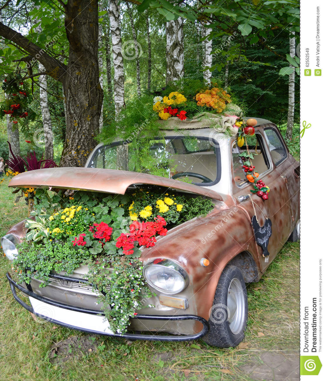 Flowers Under The Hood Of An Old Car Stock Image