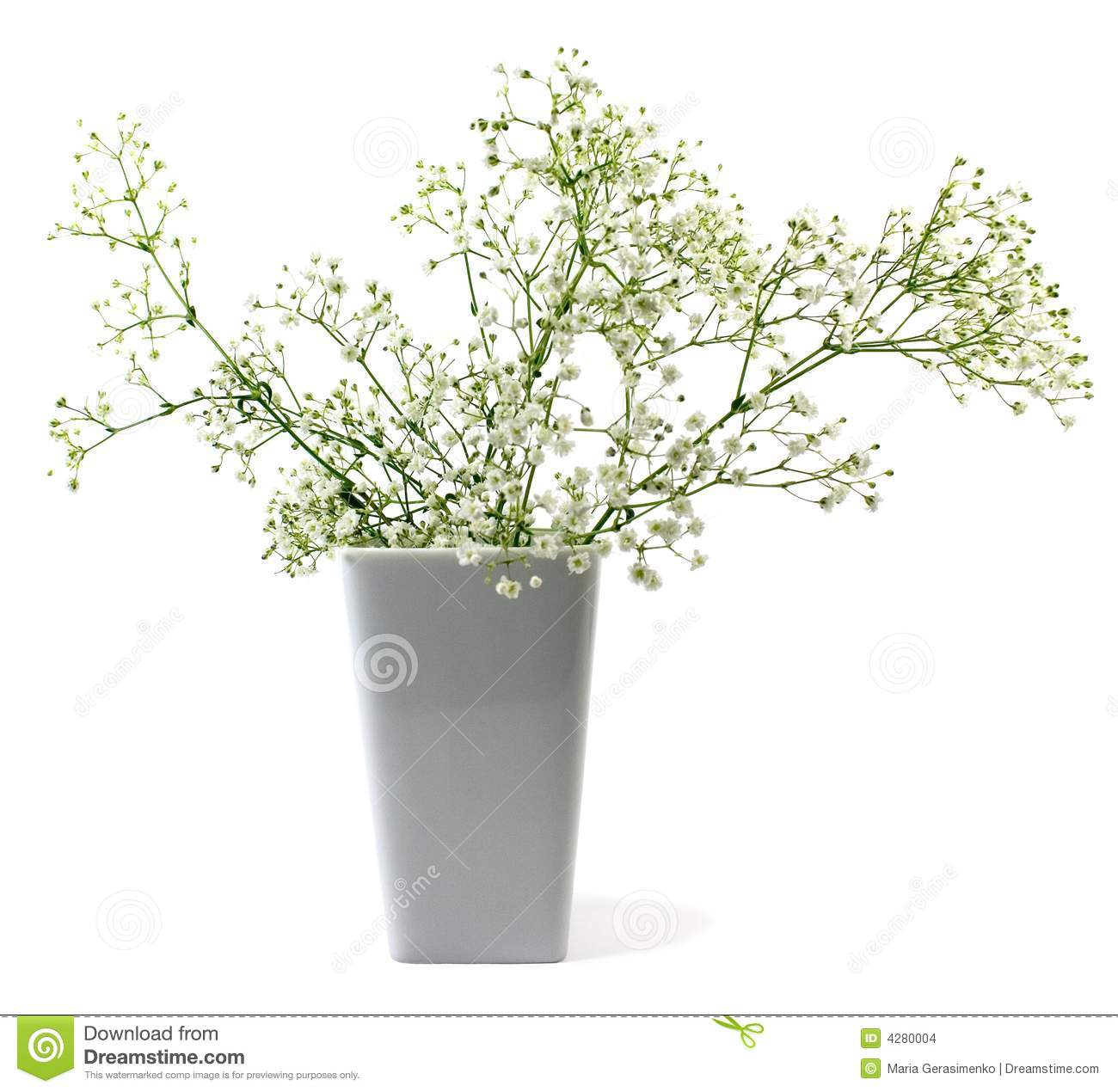 Flowers In Vase Stock Photo Image Of Decoration White 4280004