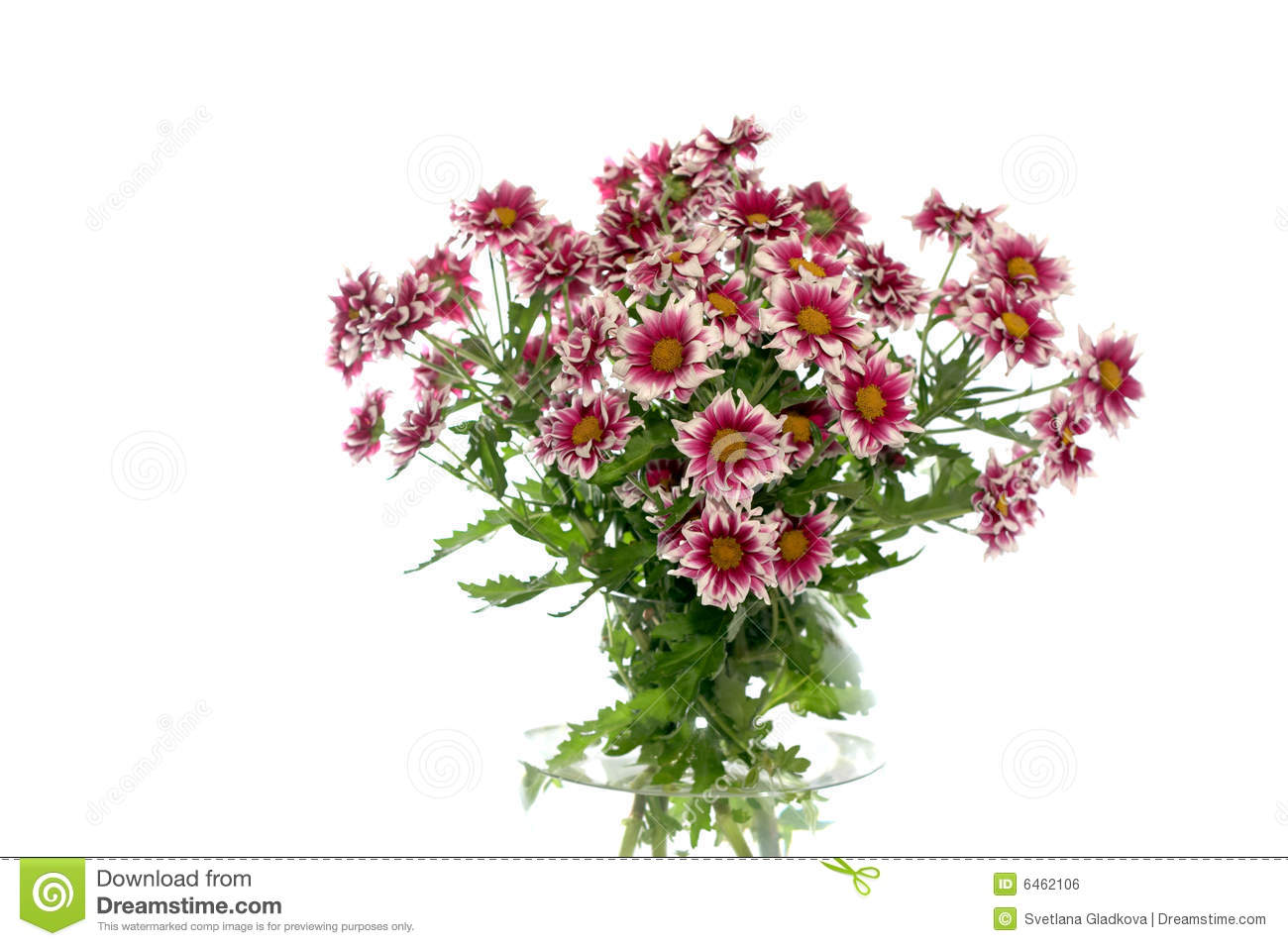 Flowers In A Vase On A White Background Stock Photo